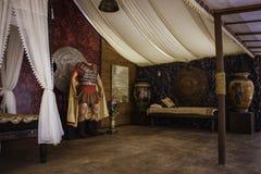 Filme retrospectivo Alexander da exposição Imagem de Stock