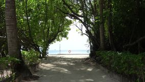 Filmed on a small Maldives island between the trees. Towards the beach stock footage