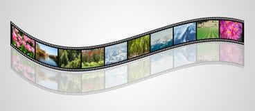 Filmen som göras med olika naturfoto Arkivbilder