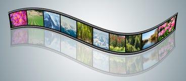 Filmen som göras med olika naturfoto Arkivbild