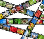 Filmez la bande avec différentes photos - durée et nature Image libre de droits