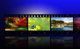 filmfoto Arkivfoton