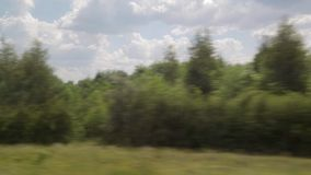 Filming from the window of a moving train. Summer Sunny day, forest, power lines.  stock video footage