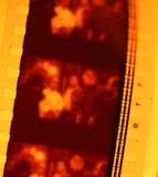 Filmrulle Royaltyfria Foton