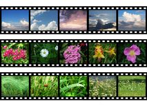 Films with images of nature Royalty Free Stock Image