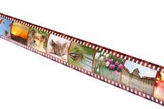 Filmstreifen mit bunten vibrierenden Fotografien Stockfotos