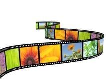 Filmstrip Royalty Free Stock Photos
