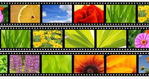 Filmstrip. Background - bright abstract photographic film Royalty Free Stock Photos
