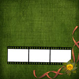 Filmstrip with bunch of flowers Royalty Free Stock Image