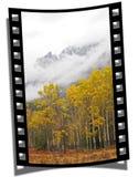 Filmstrip Feld lizenzfreie stockfotos