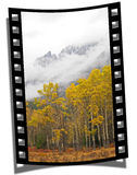 Filmstrip Frame. Cut piece of filmstrip of a travel movie on a developed negative curled at the edges Royalty Free Stock Photos