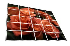 Filmstrips composing a rose scene. Group of multiple filmstrips composing a rose scene Stock Photo