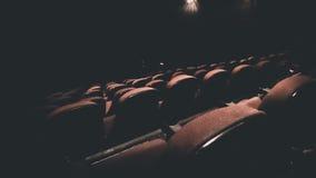 Filmteater Royaltyfri Foto