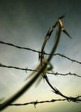 Filo Fotografia Stock Libera da Diritti