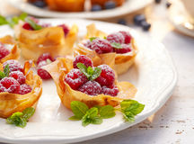 Filo cups with Mascarpone filling topped with raspberries , delicious dessert. Phyllo cups with Mascarpone filling topped with raspberries on a white plate royalty free stock photo