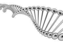 Filo del DNA Fotografie Stock