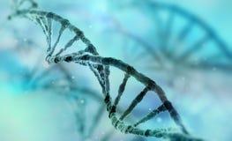 Filo del DNA Immagini Stock Libere da Diritti
