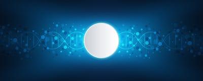 Filo del DNA e struttura molecolare Ingegneria o ricerca genetica del laboratorio Struttura del fondo per medico o illustrazione di stock