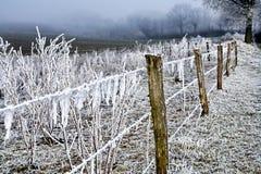 Filo ghiacciato di paesaggio di inverno fotografia stock