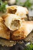 Filo pasties. With spicy filling Stock Images