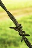 Filo spinato Fotografie Stock