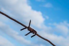 Filo spinato contro il cielo blu Fotografia Stock Libera da Diritti
