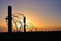 Filo spinato nel tramonto Immagine Stock Libera da Diritti