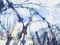 Filo spinato protettivo pericoloso tagliente del metallo del ferro sul recinto con le punte ed i pali contro il cielo fotografia stock libera da diritti