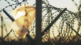 Filo spinato rigoroso della siluetta di regime della prigione del recinto recinto di immigrazione clandestina dai rifugiati Conce video d archivio