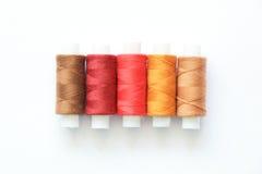 Fils colorés de couture Image libre de droits
