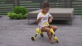 Fils de bébé garçon montant une bicyclette de trois roues qui ressembler à une abeille - scène chaude d'été de couleur de valeurs banque de vidéos