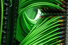Fils verts de réseau reliés au serveur Photo libre de droits