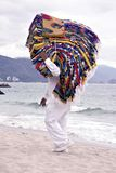 filt mexikan Royaltyfri Foto