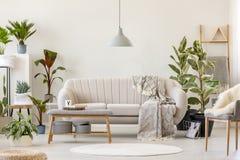 Filt på beige soffa under den gråa lampan i blom- vardagsrum in royaltyfria foton