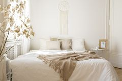 Filt på vit säng med kuddar i minsta sovruminre med växten och tabellen royaltyfria foton