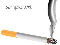 Filter cigarette against white background Stock Photos