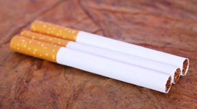 Filter cigarette Stock Image