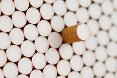 Filter cigarettes Stock Photography