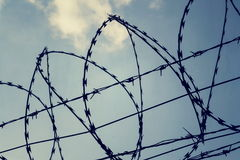 Filtered vintage picture of barbed wire fence Royalty Free Stock Photography