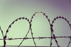 Filtered vintage picture of barbed wire fence Royalty Free Stock Image