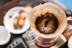 Filterkaffe som bryggar droppande som blommar royaltyfria foton