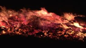 Filtração perto acima do fogo que queima-se no fumo e em logs pretos do fundo vídeos de arquivo