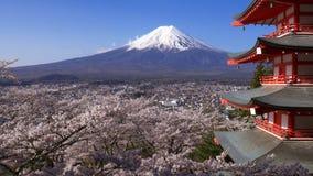 Filtrado del tiro del Mt Fuji con la pagoda de Chureito en la primavera, Fujiyoshida, Jap?n almacen de video