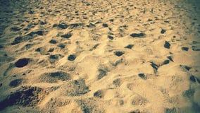 Filtrado sobre la playa arenosa metrajes