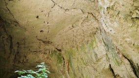 Filtrando o tiro das rochas na caverna vídeos de arquivo