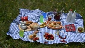 Filtrando sopra l'alimento di picnic video d archivio