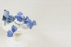 Filtre bleu de peinture à l'huile d'hortensia image libre de droits