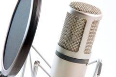 Filtre de microphone horizontal Images libres de droits