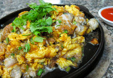 Filtre a ostra fritada, ostra fritada do estilo chinês bandeja quente Imagem de Stock