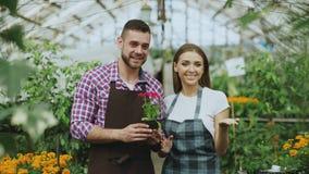 Filtri il colpo di giovani giardinieri sorridenti delle coppie di blogger in fiore della tenuta del grembiule che parlano e del b Fotografia Stock Libera da Diritti